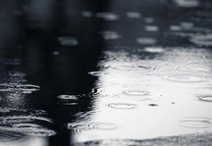 省防指召开会商会议部署降雨防御工作