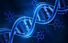 """""""DNA之父"""":期待与中国合作推动基因科技发展"""