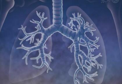 秋天养肺第一秘诀
