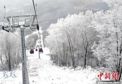 美爆了!吉林市迎来今冬首场雾凇,银装素裹如童话