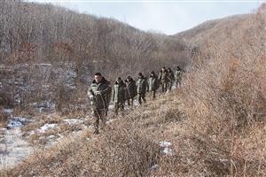 出动3380人次 清缴猎套150个 珲春林区清山清套守护虎豹栖息地