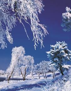 春节期间 吉林省累计接待游客1262.84万人次