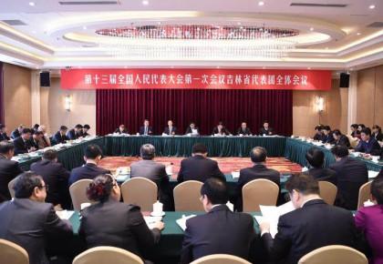 吉林代表团审查计划和预算报告 巴音朝鲁景俊海参加审议
