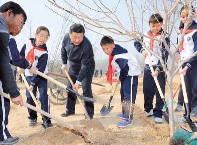 新华社评论员:种下一片新绿 收获美丽中国