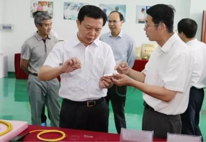 追记因公牺牲的武汉市委原常委、组织部长杨汉军