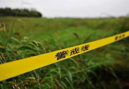 吉林省最大的非法收购盗伐林木案侦破纪实