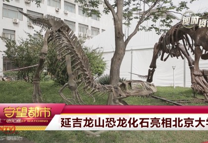 【点赞】延吉龙山恐龙化石亮相北京大学