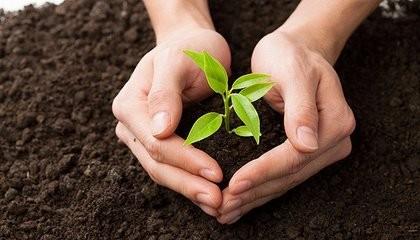 我国发布农用地土壤污染风险管控标准,8月1日起实施
