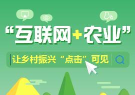 """图解丨""""互联网+农业""""让乡村振兴""""点击""""可见"""