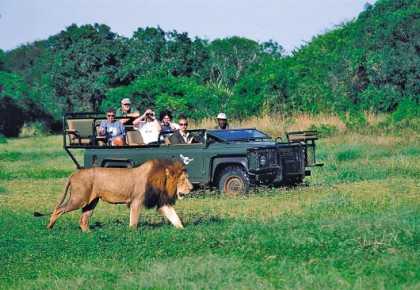 赴南非度假旅客增加 中使馆提醒注意旅行安全