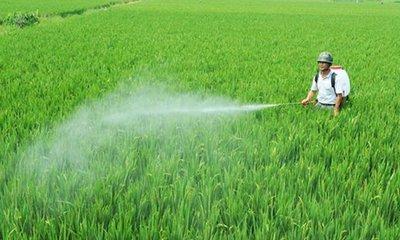 农业农村部:我国化肥农药使用量零增长提前三年实现