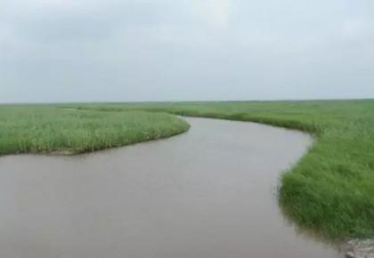 """【三年·答卷】""""西部供水""""工程为吉林大地注入清泉"""