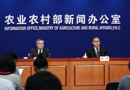 农业农村部:上半年我国农产品市场供给总体充裕 多数农产品价格呈下跌走势