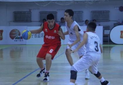 东北虎小虎队获2018中国小篮球联赛东北大区赛亚军