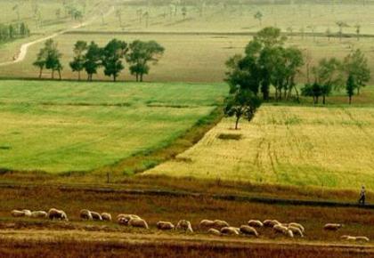 我国农村土地制度改革完成阶段性目标任务
