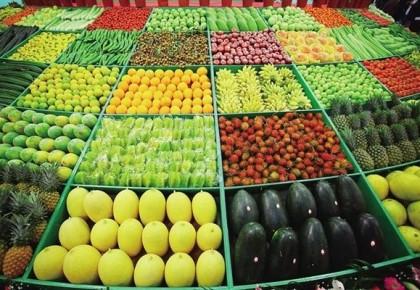 農業農村部:前7個月農業農村經濟運行平穩向好