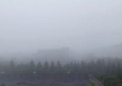 注意!长春今早大雾,开车千万要小心!