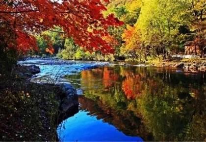 """这些地方可以看见省内""""醉""""美的秋天 十一走起!"""