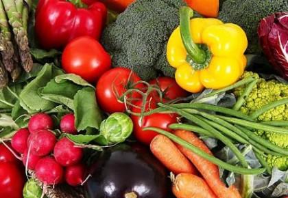吉林省农委:我省农产品质量安全水平较为稳定 蔬菜合格率为98.9%