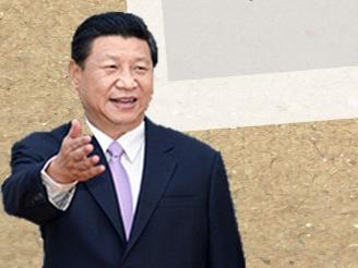 中非合作论坛北京峰会开幕式上,习近平这样阐述中非关系