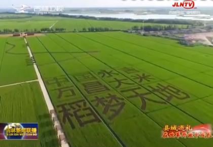 县域巡礼•在改革开放中成长:永吉田野上的新希望