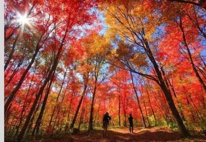 获评年度最佳自驾游线路的桦甸 一路美景沿秋而至