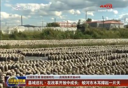 县域巡礼•在改革开放中成长:蛟河市木耳撑起一片天