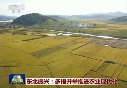 央视新闻联播头条关注吉林推进农业现代化