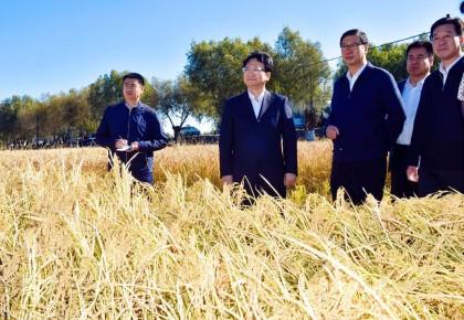 景俊海到德惠市调研时强调 扎实搞好秋收促进农民增收 推广农业科技保护生态环境