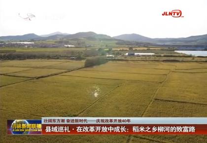 县域巡礼•在改革开放中成长:稻米之乡柳河的致富路