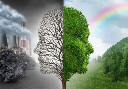 白山市通报六起生态环境损害责任追究典型问题