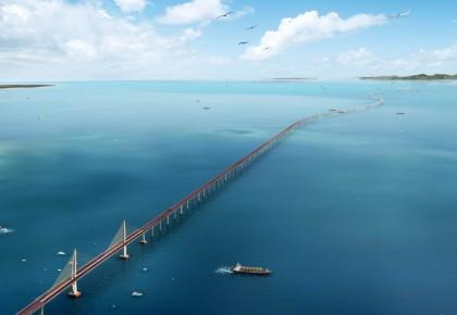 """港珠澳大桥:与中华白海豚共处的""""国之重器"""""""