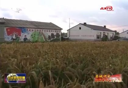 县域巡礼·在改革开放中成长:镇赉产业扶贫故事多