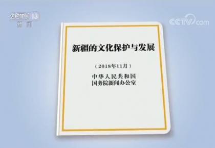 国务院新闻办发表《新疆的文化保护与发展》白皮书