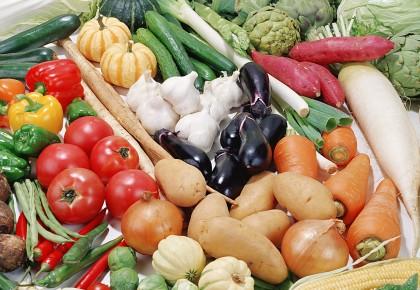 本周长春市菜价走势平稳 这13种蔬菜降价了!