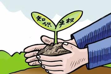 厉害了!中国各类知识产权申请量均位列世界第一
