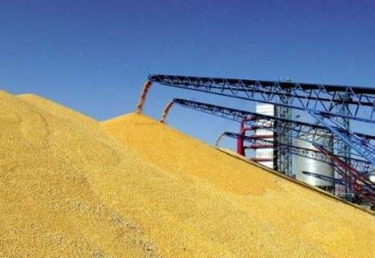 截至12月初,吉林省收购粮食60.3亿斤