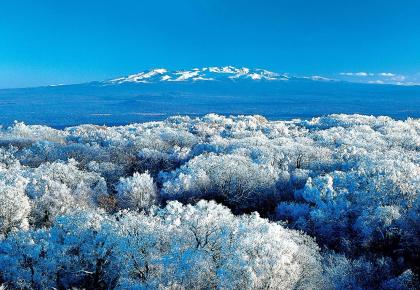 北上赏雪!吉林省成国内游十大热门地之一!