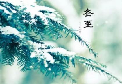 今日冬至,你吃饺子了吗?