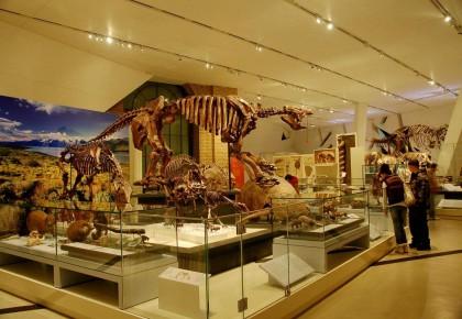 我国博物馆数量超5000家!年参观人数近10亿