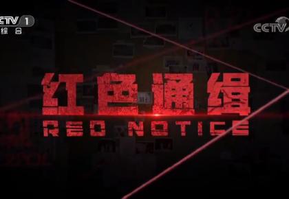 《红色通缉》第一集《引领》
