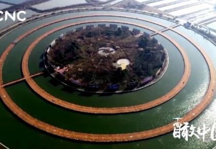 瞰中国 | 洪泽湖芦苇迷宫 迷你千遍不厌倦