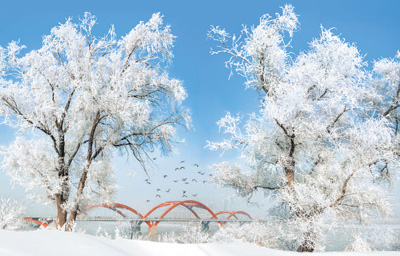 冰天雪地也是金山银山(大美中国)