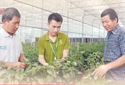 一个流动的中国,充满了繁荣发展的活力—— 今年春节不一样