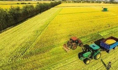 遵循规律 崇尚科学 准确把握农业和农村发展在国家经济中的地位