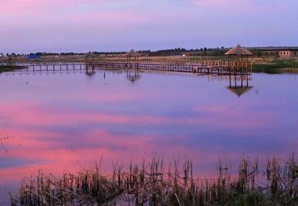 河湖连通,这里四季能赏景
