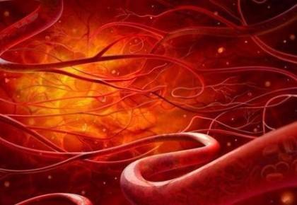 """中国科学家成功通过靶向编辑长寿基因 让老弱血管""""Q弹爽滑"""""""