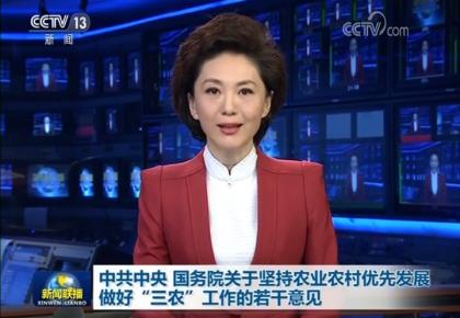 """确保如期完成""""三农""""硬任务的总部署——透视2019年中央一号文件四大信号"""