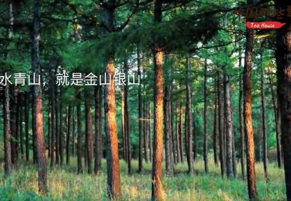 【中国那些事儿】植树添新绿扶贫再创新 中国这一壮举造福全世界