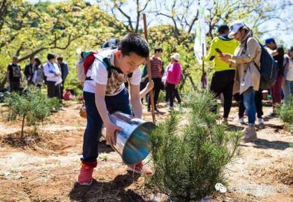 2019年北京计划完成义务植树及抚育树木1200万株